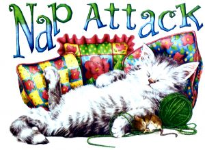 Nap Attack T Shirt