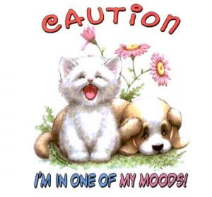 Caution, I'm in one of my Moods! T Shirt