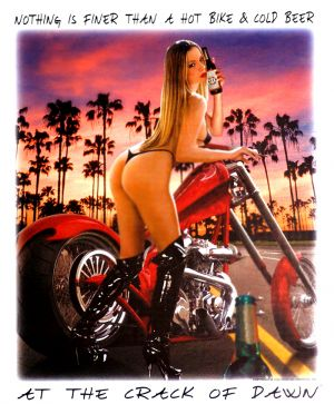 Hot Bike and Cold Beer T Shirt