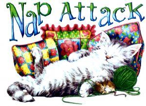Nap Attack T Shirt