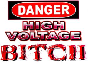 Danger - High Voltage Bitch T Shirt
