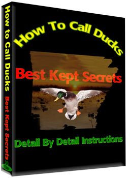How to Call Ducks - DVD