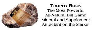 Deer Mineral Blocks